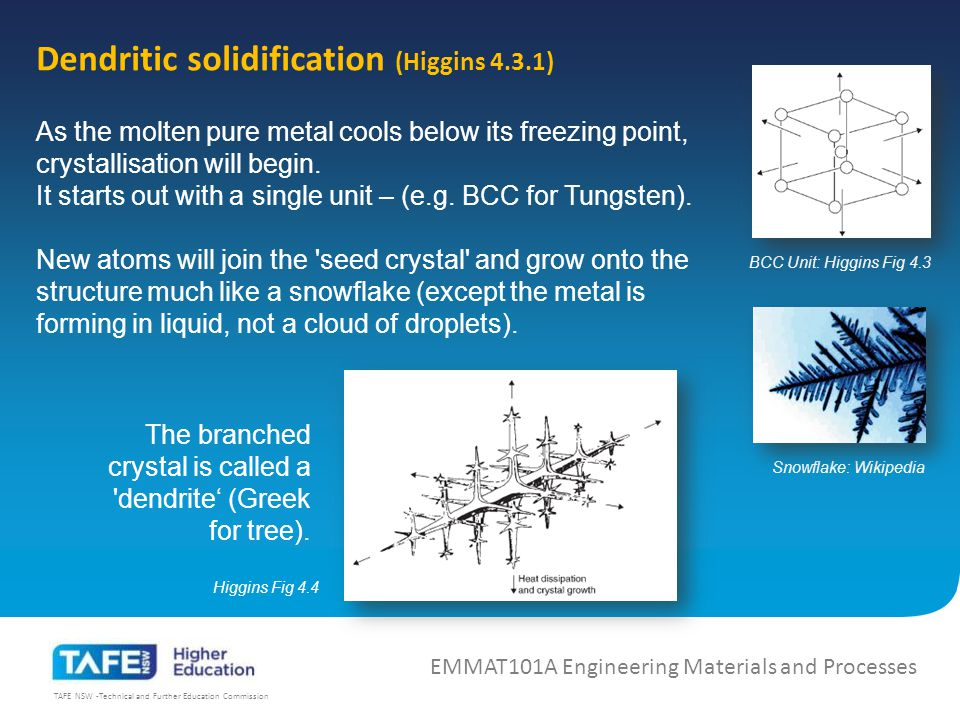 TAFE NSW -Technical and Further Education Commission Dendritic solidification (Higgins 4.3.1) As the molten pure metal cools below its freezing point, crystallisation will begin.