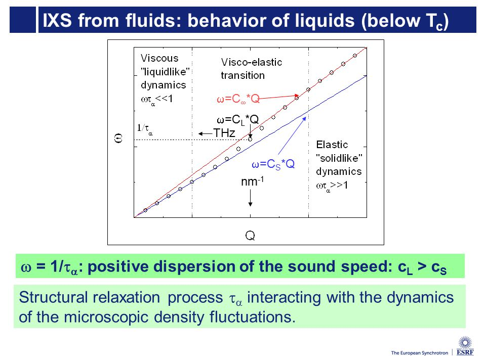 IXS from fluids: behavior of liquids (below T c )  =C S *Q  =C  *Q THz nm -1  =C L *Q  = 1/   : positive dispersion of the sound speed: c L > c S Structural relaxation process   interacting with the dynamics of the microscopic density fluctuations.