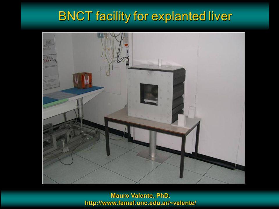 Prof. Mauro Valente - CONICET & Universidad Nacional de Cordoba 13 BNCT facility for explanted liver Mauro Valente, PhD. http://www.famaf.unc.edu.ar/~