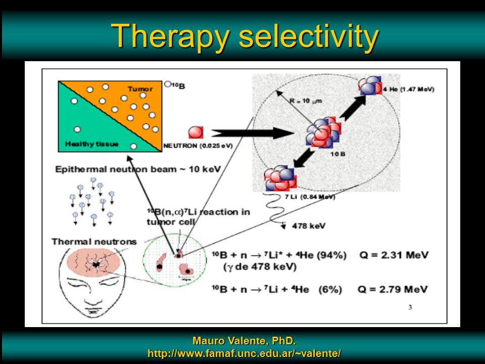 Prof. Mauro Valente - CONICET & Universidad Nacional de Cordoba 7 Therapy selectivity Mauro Valente, PhD. http://www.famaf.unc.edu.ar/~valente/