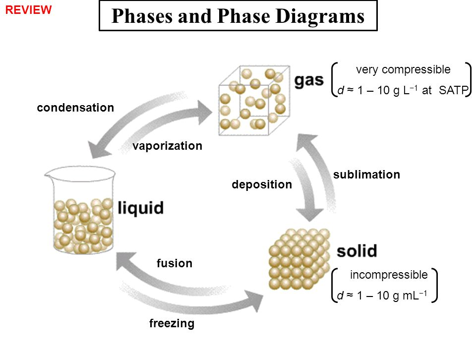 Phases and Phase Diagrams condensation vaporization deposition sublimation fusion freezing incompressible d ≈ 1 – 10 g mL −1 very compressible d ≈ 1 –