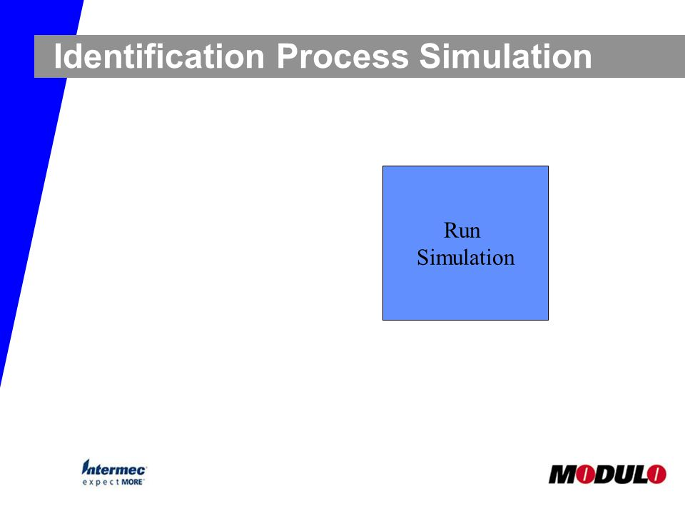 Identification Process Simulation Run Simulation