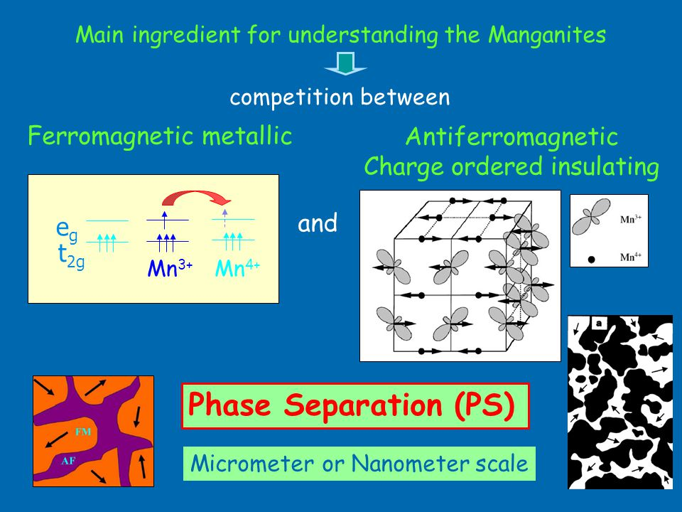 Main ingredient for understanding the Manganites Ferromagnetic metallic t 2g egeg Mn 4+ Mn 3+ Antiferromagnetic Charge ordered insulating competition between and Micrometer or Nanometer scale Phase Separation (PS)