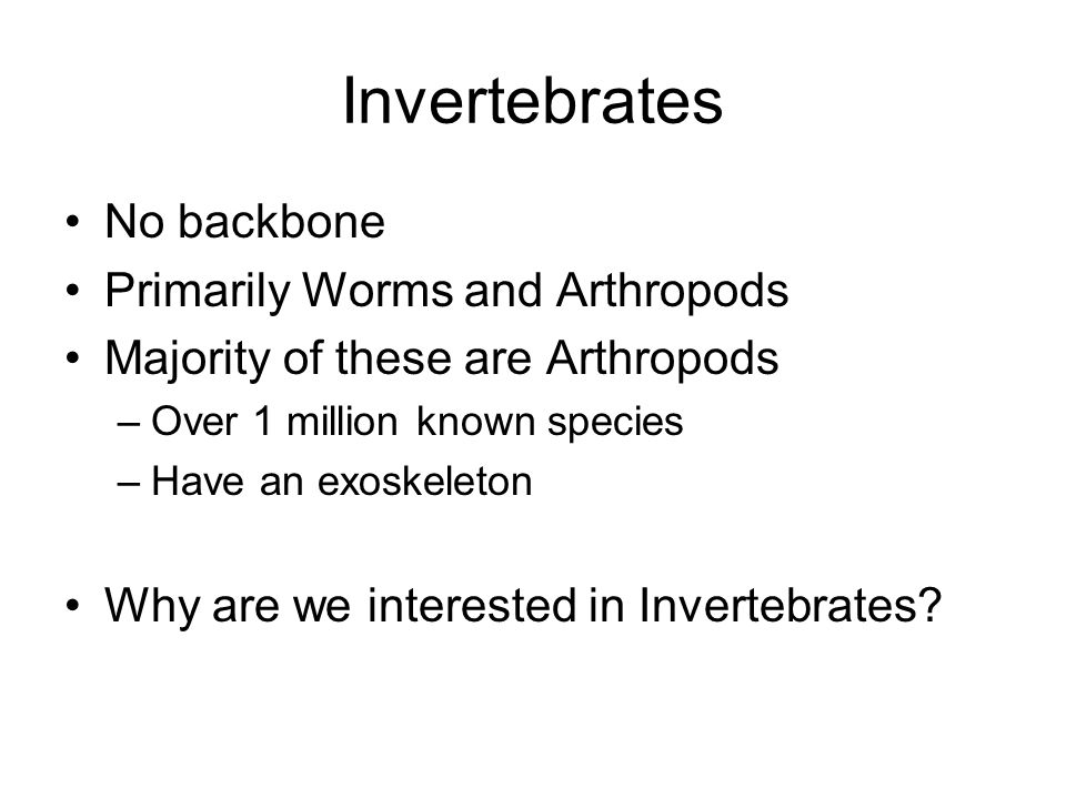 Invertebrates No backbone Primarily Worms and Arthropods Majority of these are Arthropods –Over 1 million known species –Have an exoskeleton Why are w