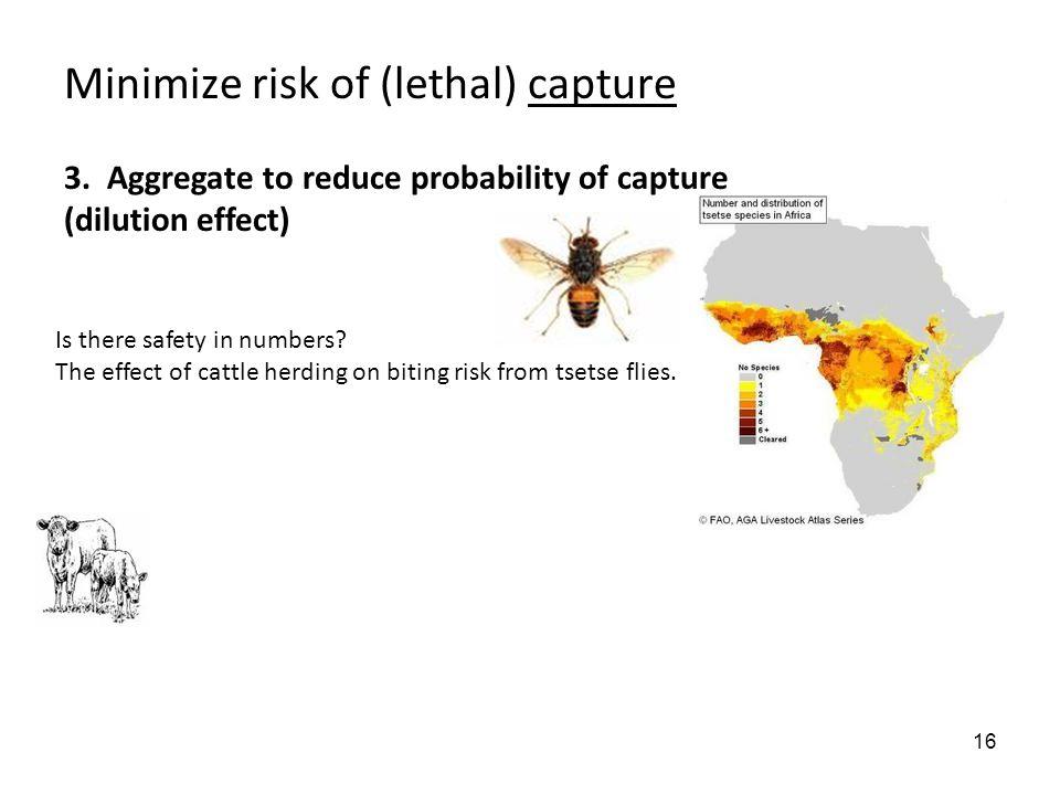 16 Minimize risk of (lethal) capture 3.
