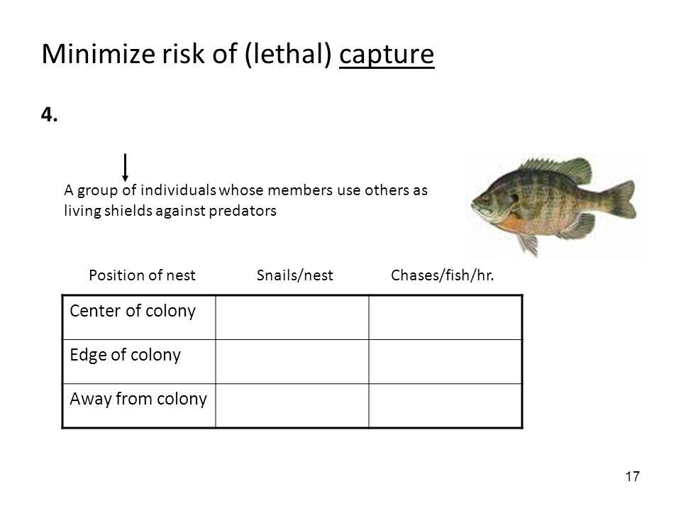17 Minimize risk of (lethal) capture 4.