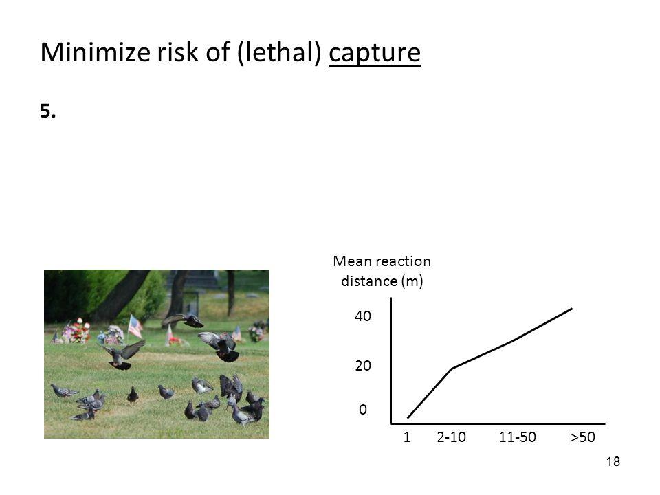 18 Minimize risk of (lethal) capture 5. 1 40 20 0 2-1011-50>50 Mean reaction distance (m)