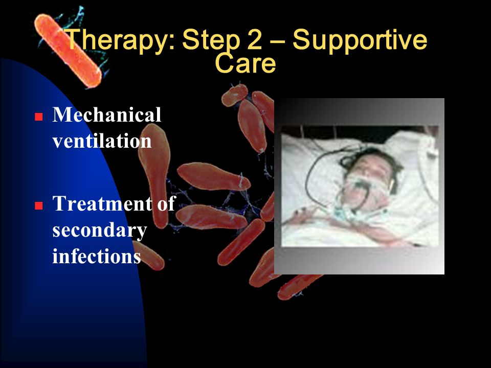 Therapy: Step 2 – Supportive Care Mechanical ventilation Treatment of secondary infections