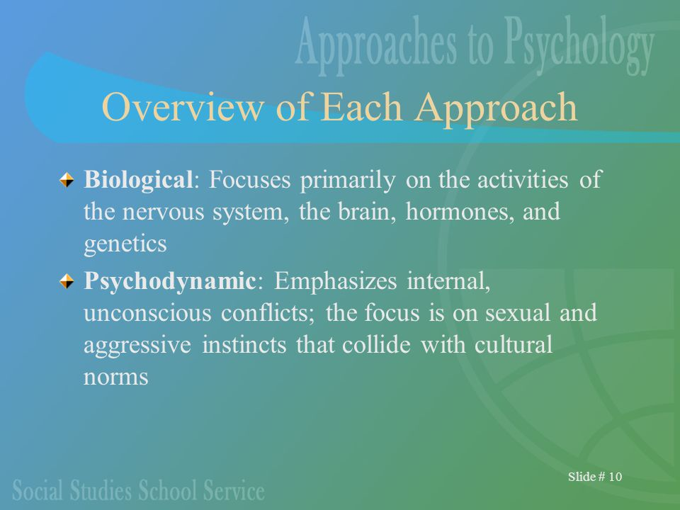 Slide # 10 Overview of Each Approach Biological: Focuses primarily on the activities of the nervous system, the brain, hormones, and genetics Psychodynamic: Emphasizes internal, unconscious conflicts; the focus is on sexual and aggressive instincts that collide with cultural norms