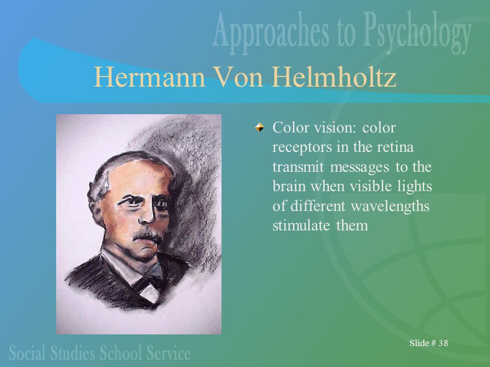 Slide # 38 Hermann Von Helmholtz Color vision: color receptors in the retina transmit messages to the brain when visible lights of different wavelengths stimulate them