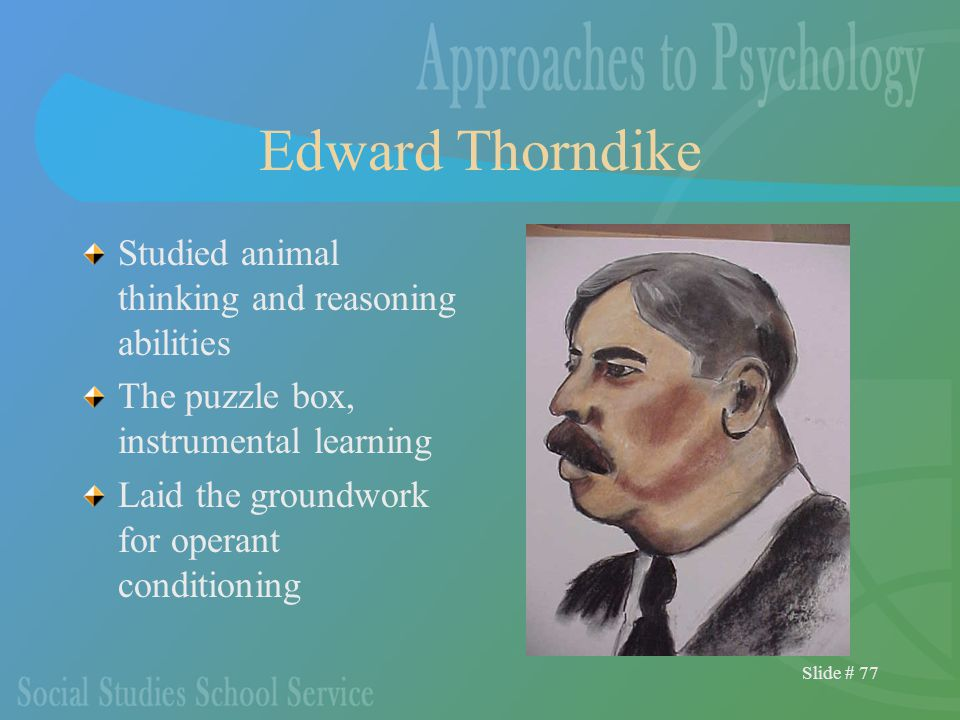 Slide # 77 Edward Thorndike Studied animal thinking and reasoning abilities The puzzle box, instrumental learning Laid the groundwork for operant conditioning