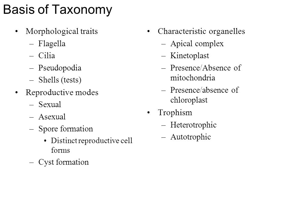 Basis of Taxonomy Morphological traits –Flagella –Cilia –Pseudopodia –Shells (tests) Reproductive modes –Sexual –Asexual –Spore formation Distinct rep