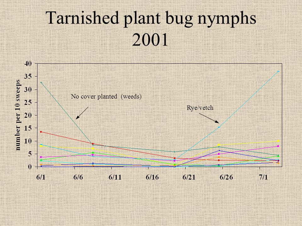 Tarnished plant bug nymphs 2001 Rye/vetch No cover planted (weeds)
