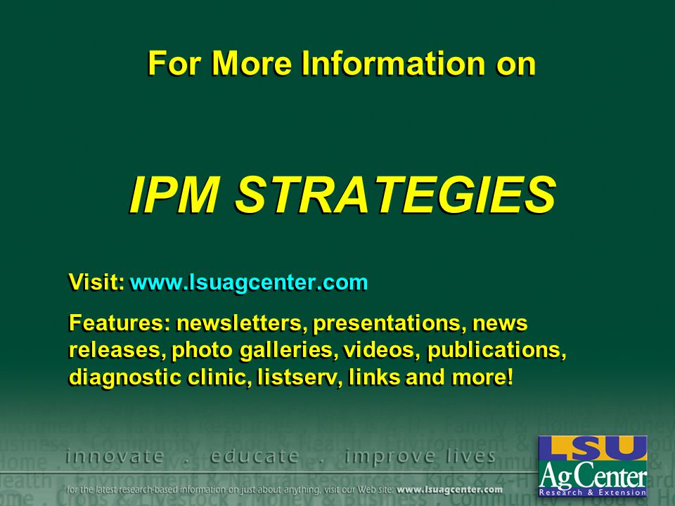 For More Information on IPM STRATEGIES Visit: www.lsuagcenter.com Features: newsletters, presentations, news releases, photo galleries, videos, publications, diagnostic clinic, listserv, links and more.