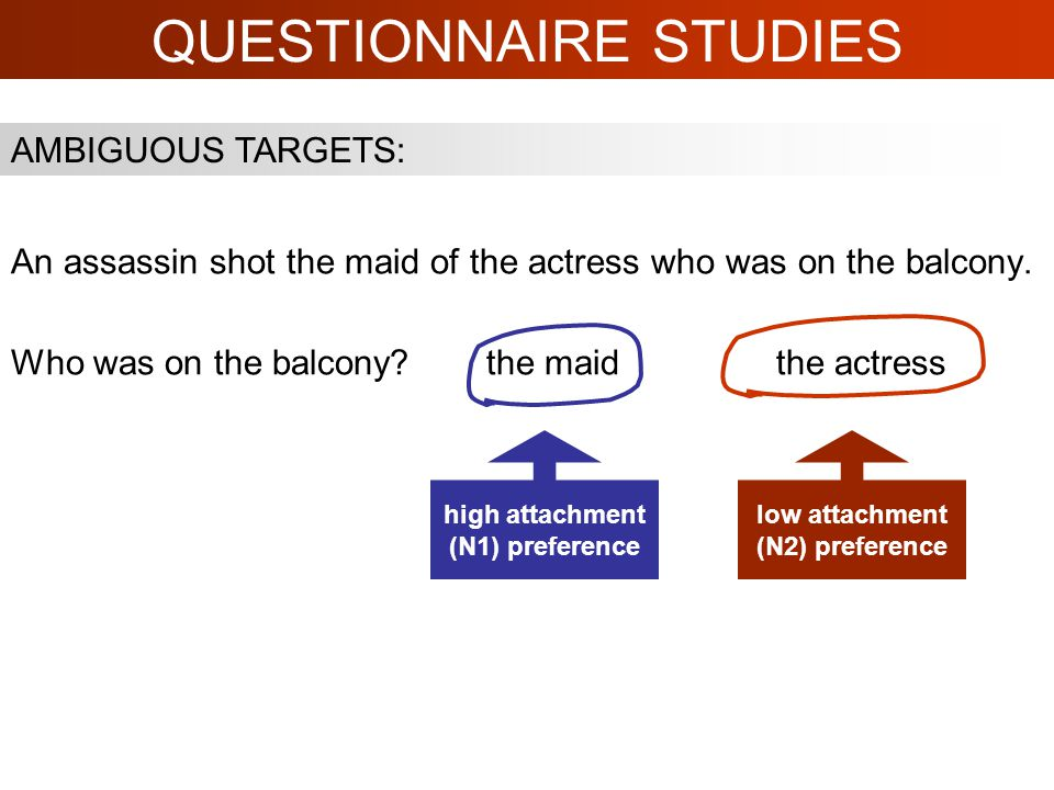 QUESTIONNAIRE STUDIES An assassin shot the maid of the actress who was on the balcony.