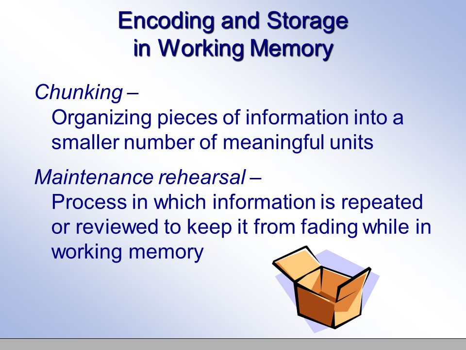 Encoding and Storage in Working Memory Chunking – Organizing pieces of information into a smaller number of meaningful units Maintenance rehearsal – Process in which information is repeated or reviewed to keep it from fading while in working memory