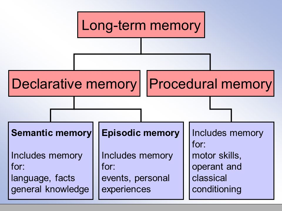 Semantic memory Includes memory for: language, facts general knowledge Episodic memory Includes memory for: events, personal experiences Includes memory for: motor skills, operant and classical conditioning Long-term memory Declarative memoryProcedural memory