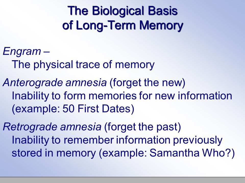 The Biological Basis of Long-Term Memory Engram – The physical trace of memory Anterograde amnesia (forget the new) Inability to form memories for new information (example: 50 First Dates) Retrograde amnesia (forget the past) Inability to remember information previously stored in memory (example: Samantha Who )