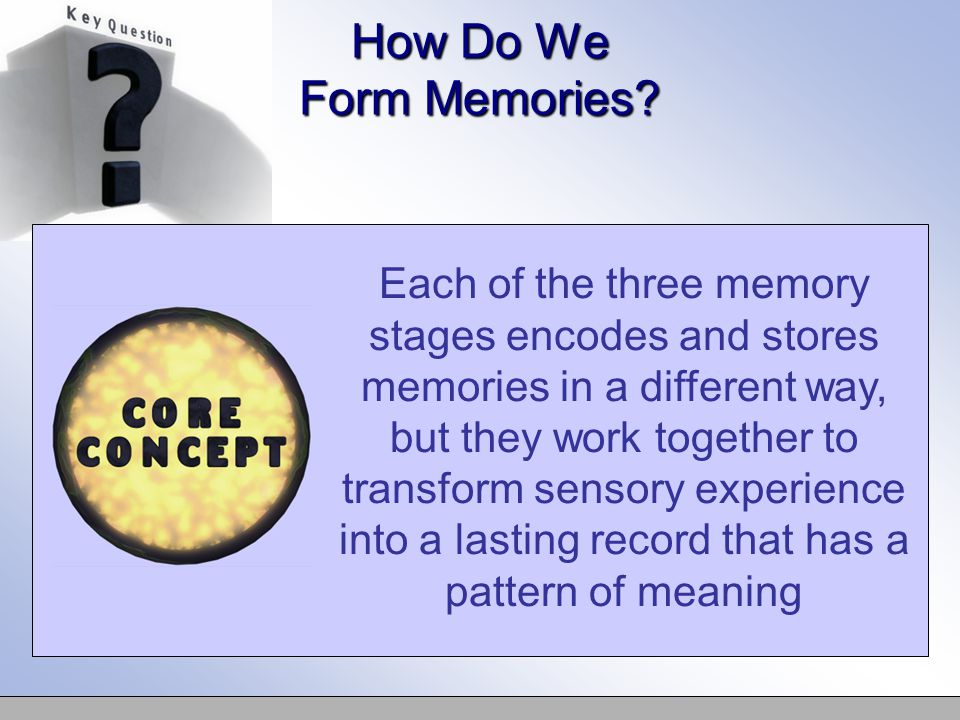 Each of the three memory stages encodes and stores memories in a different way, but they work together to transform sensory experience into a lasting record that has a pattern of meaning How Do We Form Memories