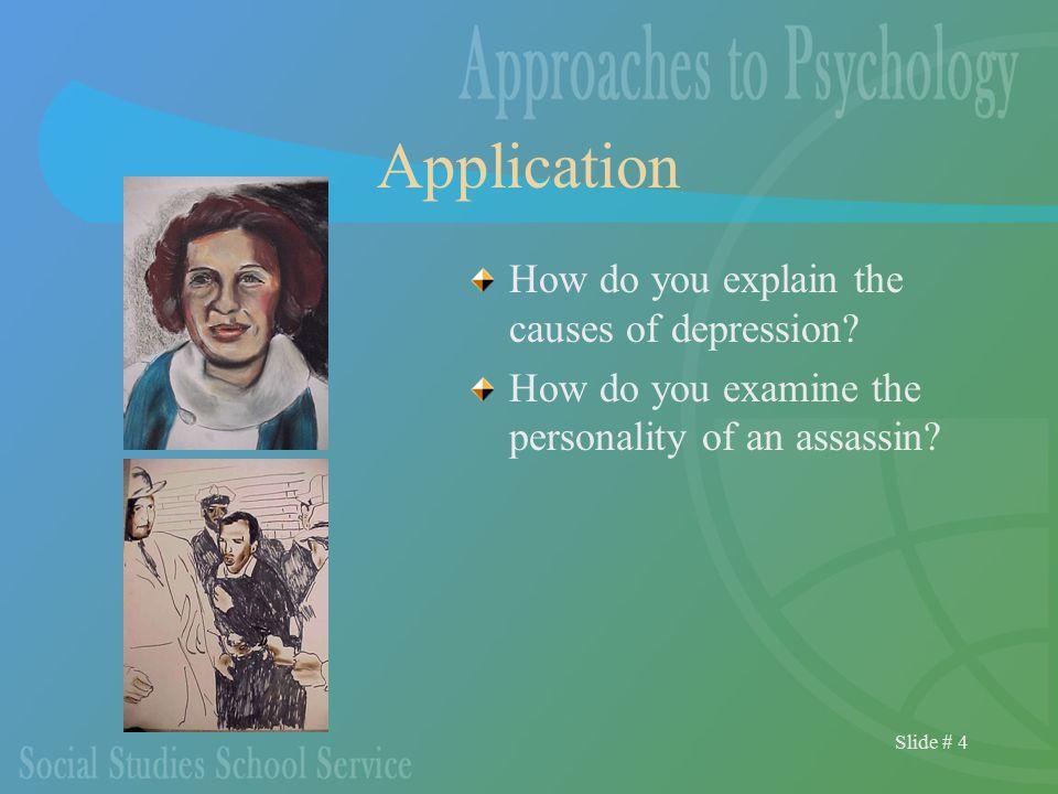 Slide # 4 Application How do you explain the causes of depression.