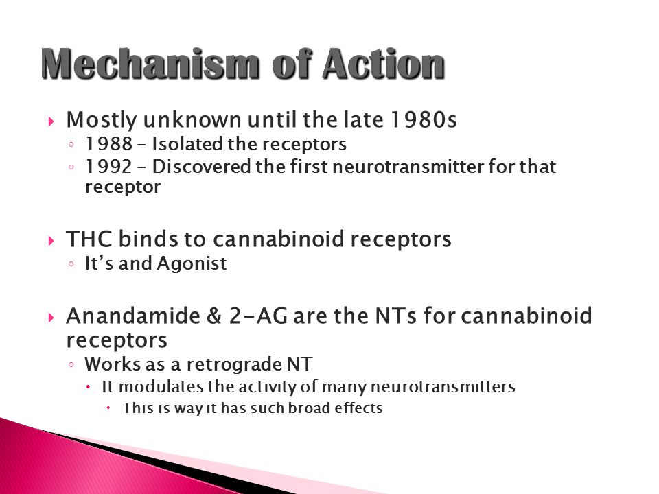  Mostly unknown until the late 1980s ◦ 1988 – Isolated the receptors ◦ 1992 – Discovered the first neurotransmitter for that receptor  THC binds to cannabinoid receptors ◦ It's and Agonist  Anandamide & 2-AG are the NTs for cannabinoid receptors ◦ Works as a retrograde NT  It modulates the activity of many neurotransmitters  This is way it has such broad effects