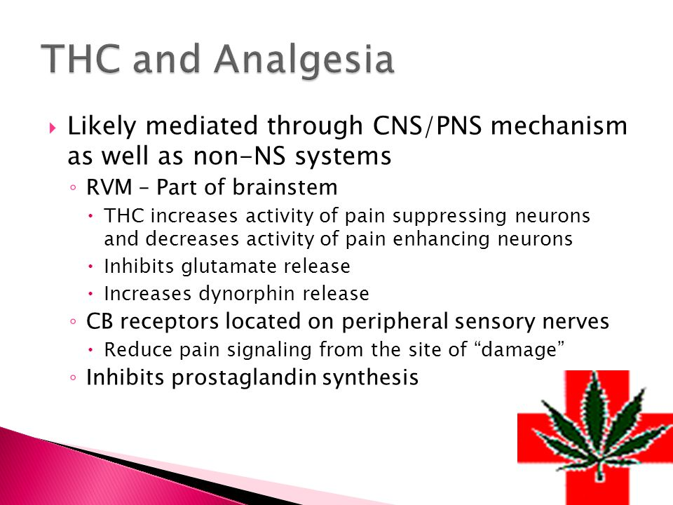  Likely mediated through CNS/PNS mechanism as well as non-NS systems ◦ RVM – Part of brainstem  THC increases activity of pain suppressing neurons and decreases activity of pain enhancing neurons  Inhibits glutamate release  Increases dynorphin release ◦ CB receptors located on peripheral sensory nerves  Reduce pain signaling from the site of damage ◦ Inhibits prostaglandin synthesis