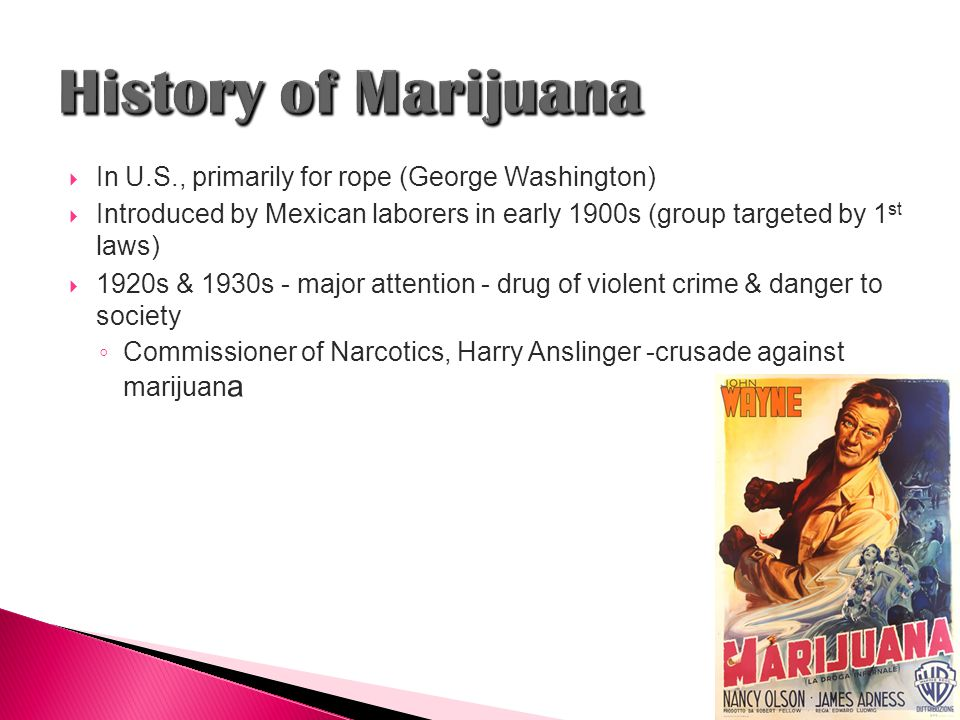  In U.S., primarily for rope (George Washington)  Introduced by Mexican laborers in early 1900s (group targeted by 1 st laws)  1920s & 1930s - major attention - drug of violent crime & danger to society ◦ Commissioner of Narcotics, Harry Anslinger -crusade against marijuan a