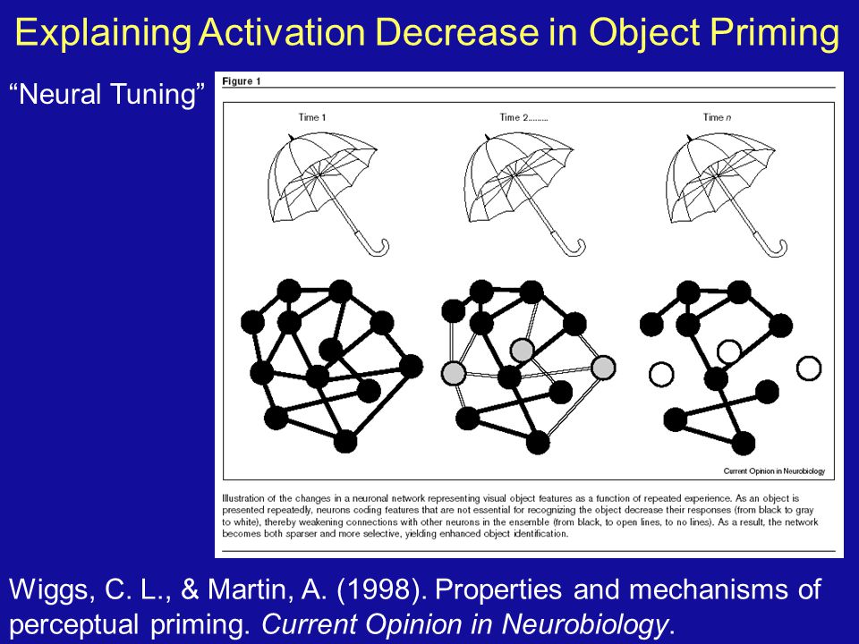 Explaining Activation Decrease in Object Priming Wiggs, C. L., & Martin, A. (1998). Properties and mechanisms of perceptual priming. Current Opinion i