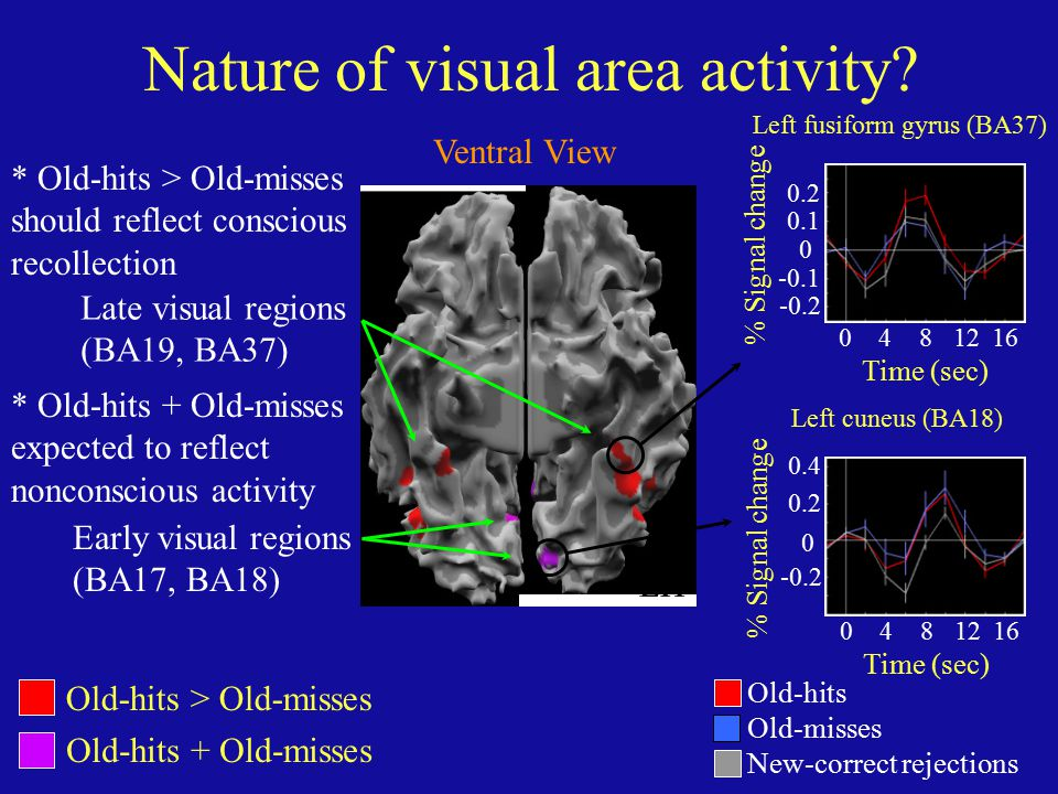 LH Old-hits > Old-misses Old-hits + Old-misses Nature of visual area activity? * Old-hits > Old-misses should reflect conscious recollection Time (sec