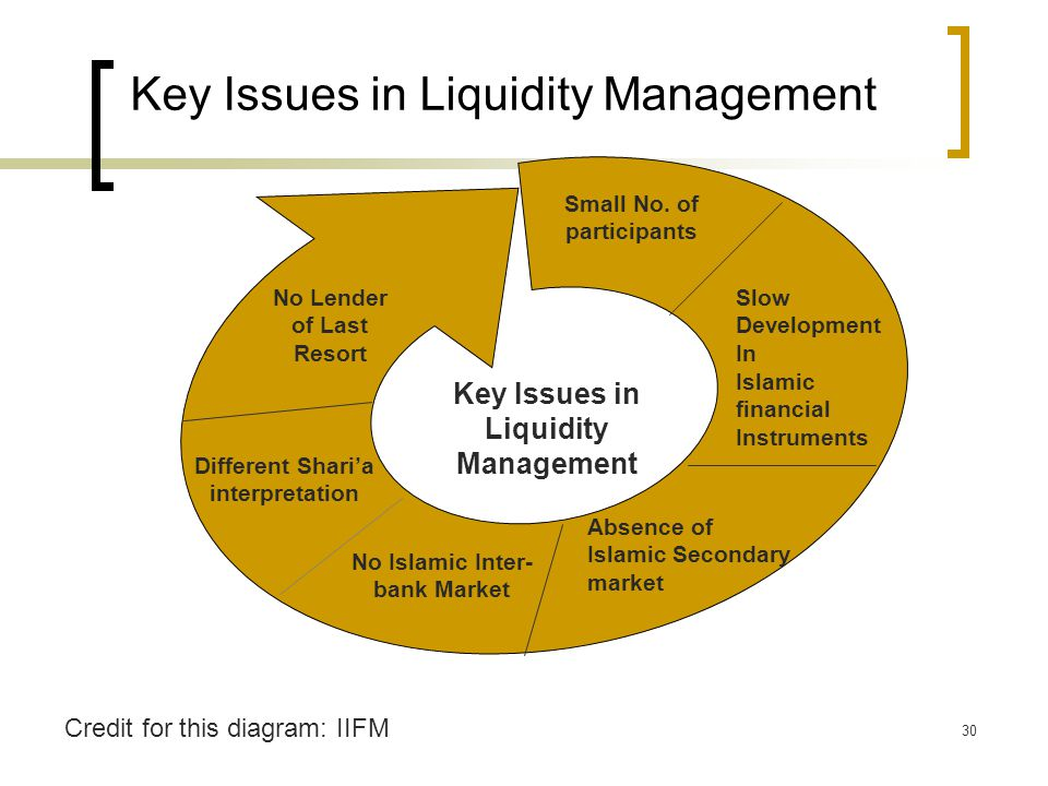 30 Key Issues in Liquidity Management Small No. of participants No Islamic Inter- bank Market Slow Development In Islamic financial Instruments Absenc