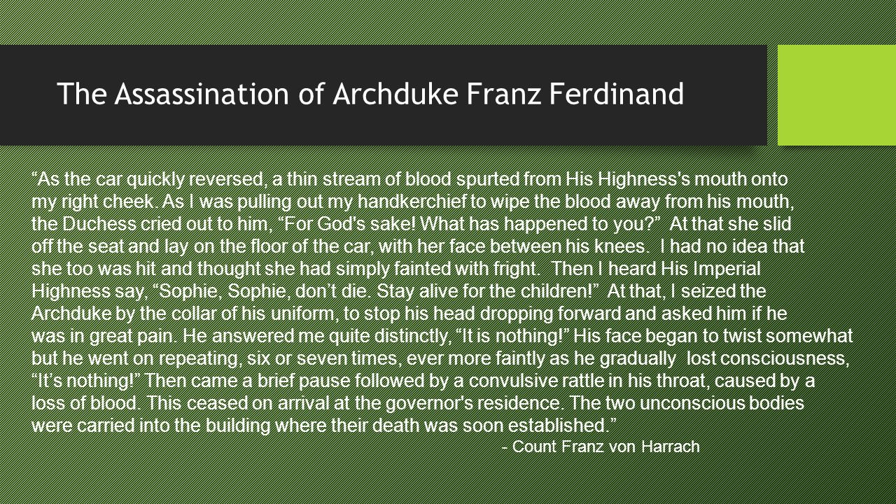 "The Assassination of Archduke Franz Ferdinand ""As the car quickly reversed, a thin stream of blood spurted from His Highness's mouth onto my right che"