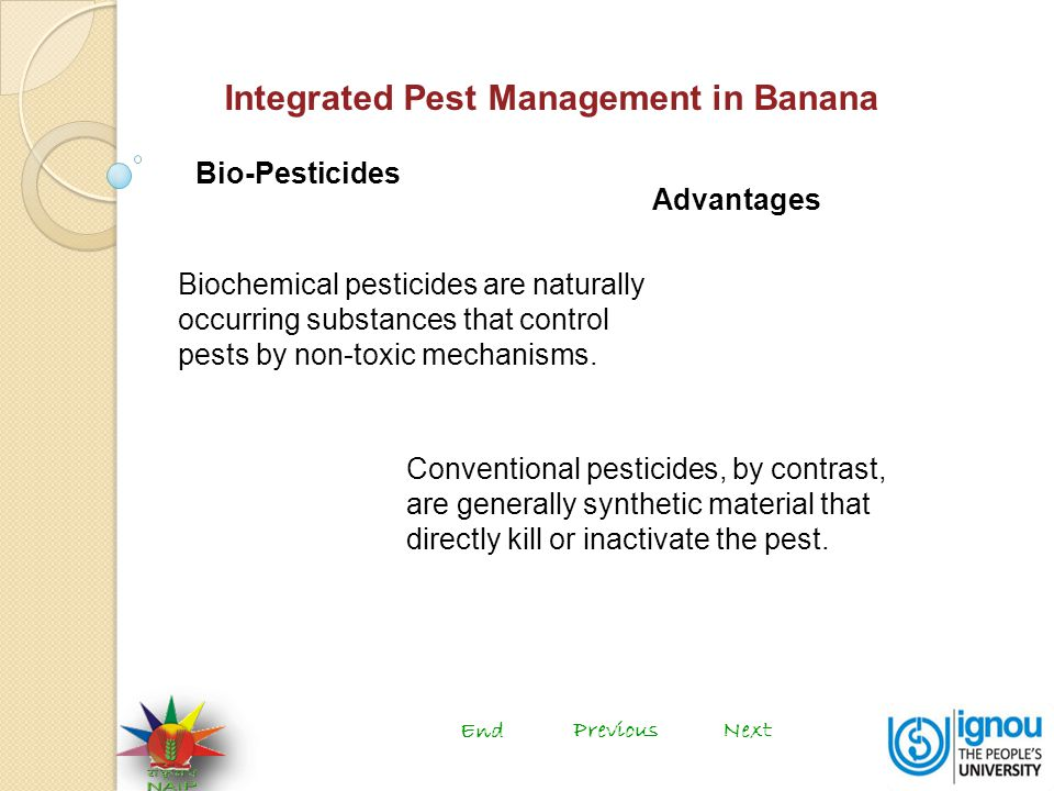 Integrated Pest Management in Banana Bio-Pesticides Biochemical pesticides are naturally occurring substances that control pests by non-toxic mechanisms.