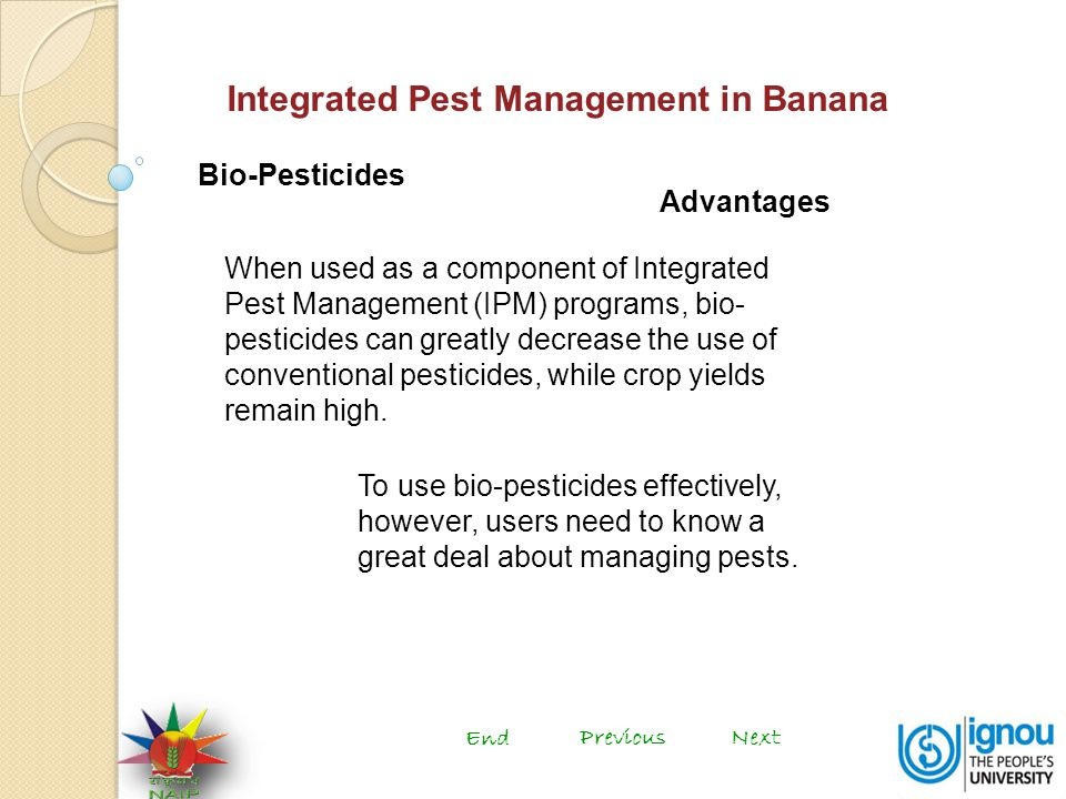 Integrated Pest Management in Banana Bio-Pesticides When used as a component of Integrated Pest Management (IPM) programs, bio- pesticides can greatly decrease the use of conventional pesticides, while crop yields remain high.