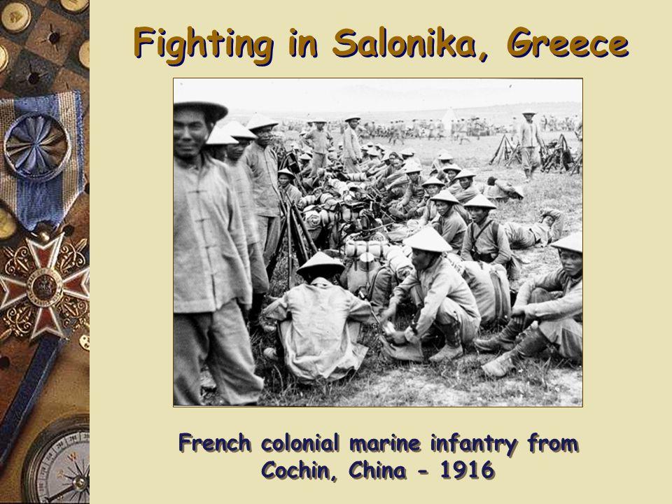 Fighting in Africa 3 rd British Battalion, Nigerian Brigade