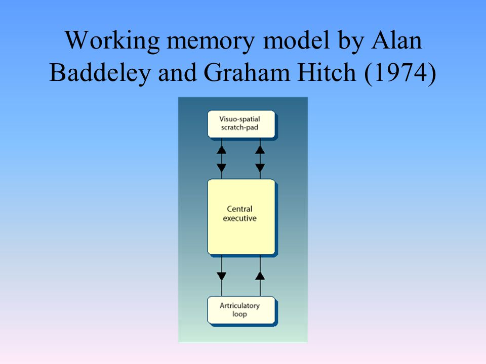 Working memory model by Alan Baddeley and Graham Hitch (1974)
