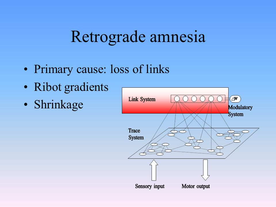 Retrograde amnesia Primary cause: loss of links Ribot gradients Shrinkage