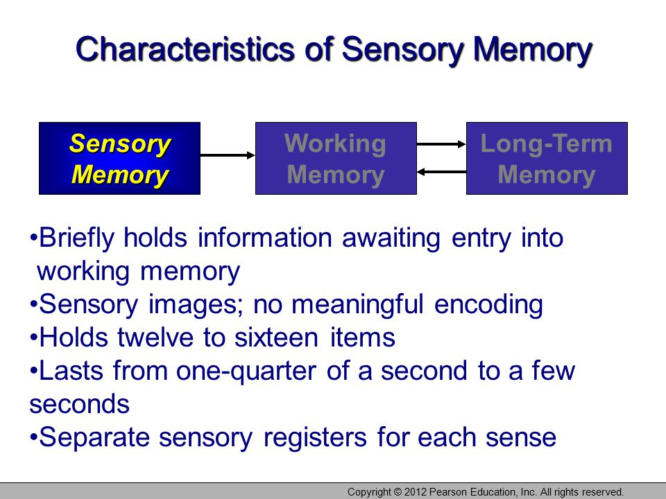 Copyright © 2012 Pearson Education, Inc. All rights reserved. Characteristics of Sensory Memory Sensory Memory Working Memory Long-Term Memory Briefly
