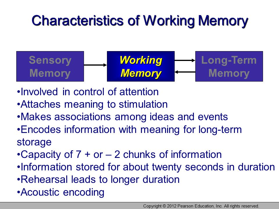Copyright © 2012 Pearson Education, Inc. All rights reserved. Characteristics of Working Memory Sensory Memory Working Memory Long-Term Memory Involve