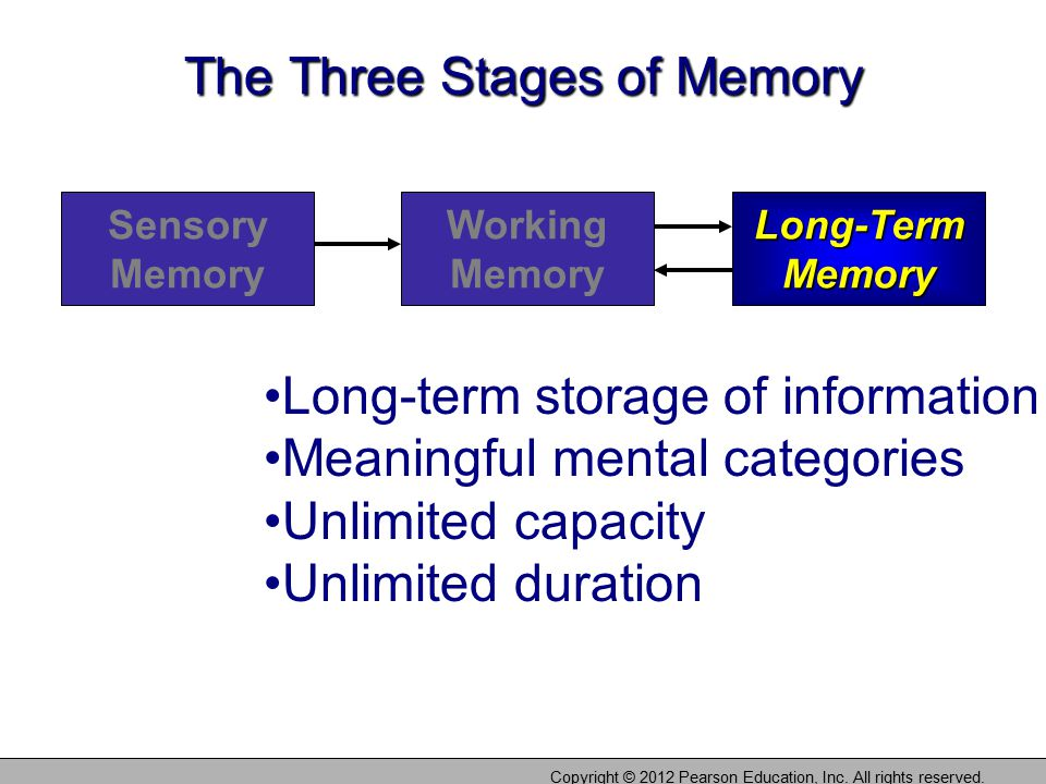 The Three Stages of Memory Sensory Memory Working Memory Long-Term Memory Copyright © 2012 Pearson Education, Inc.