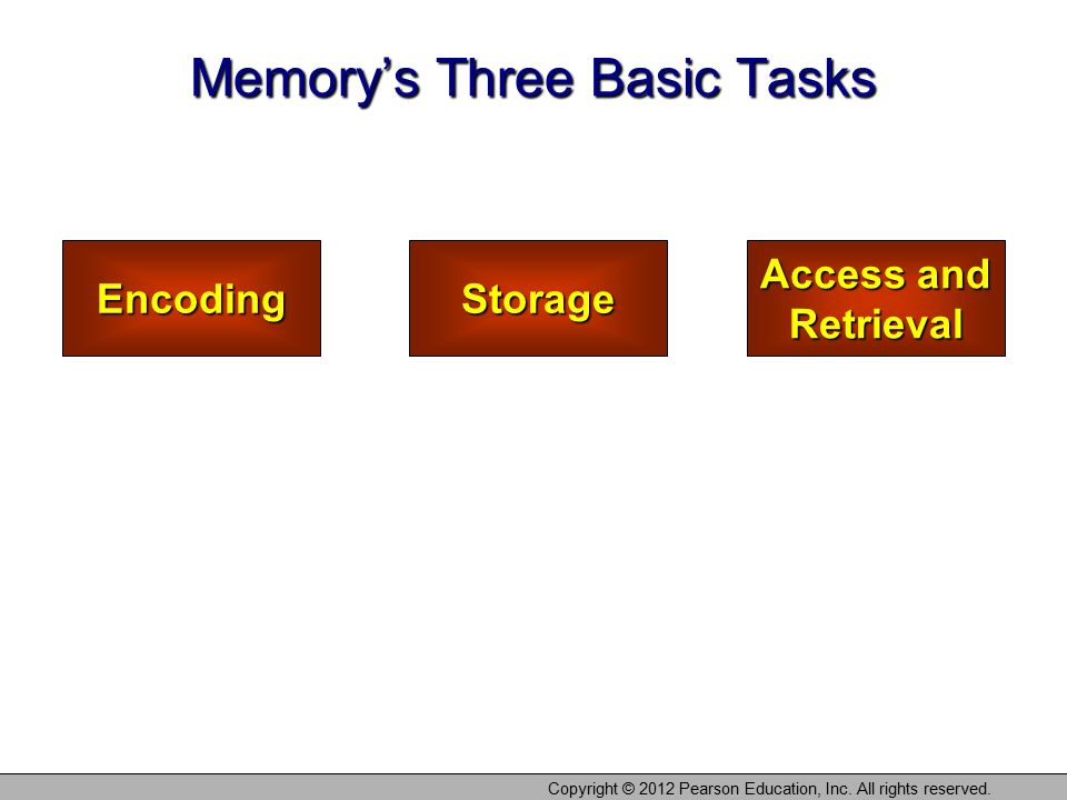 Copyright © 2012 Pearson Education, Inc. All rights reserved. EncodingStorage Access and Retrieval Memory's Three Basic Tasks