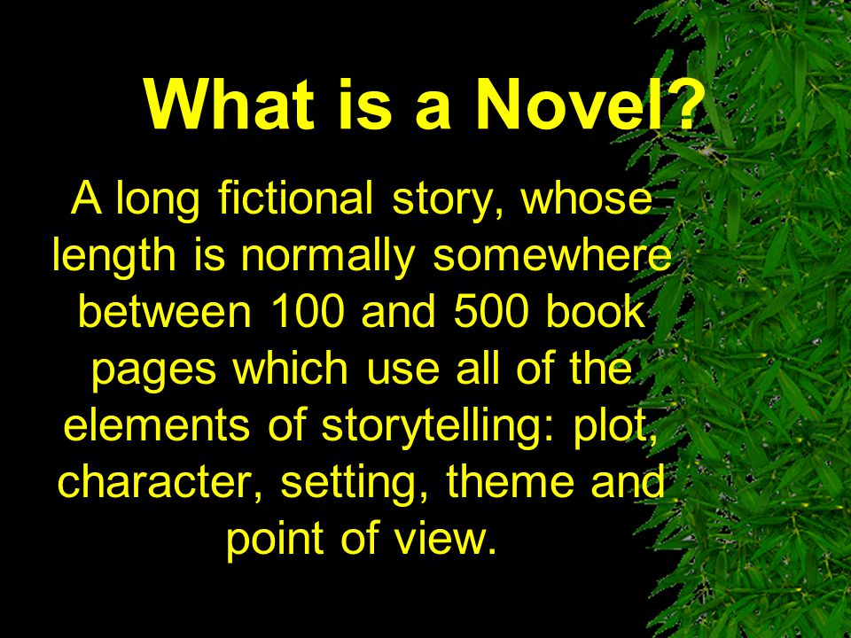 What is a Novel.