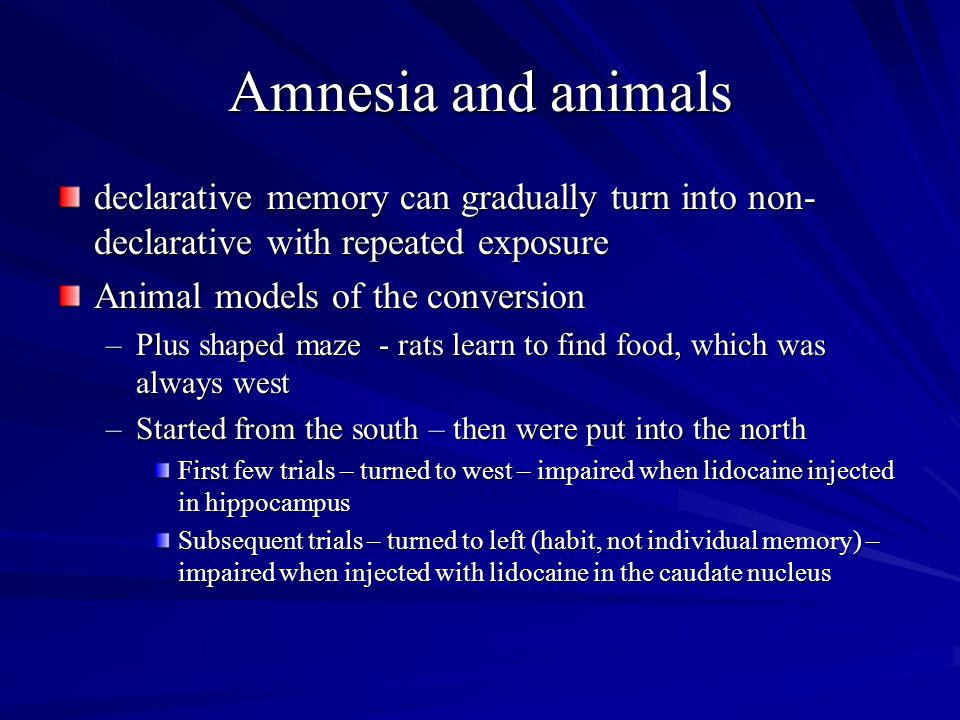 Amnesia and animals declarative memory can gradually turn into non- declarative with repeated exposure Animal models of the conversion –Plus shaped ma