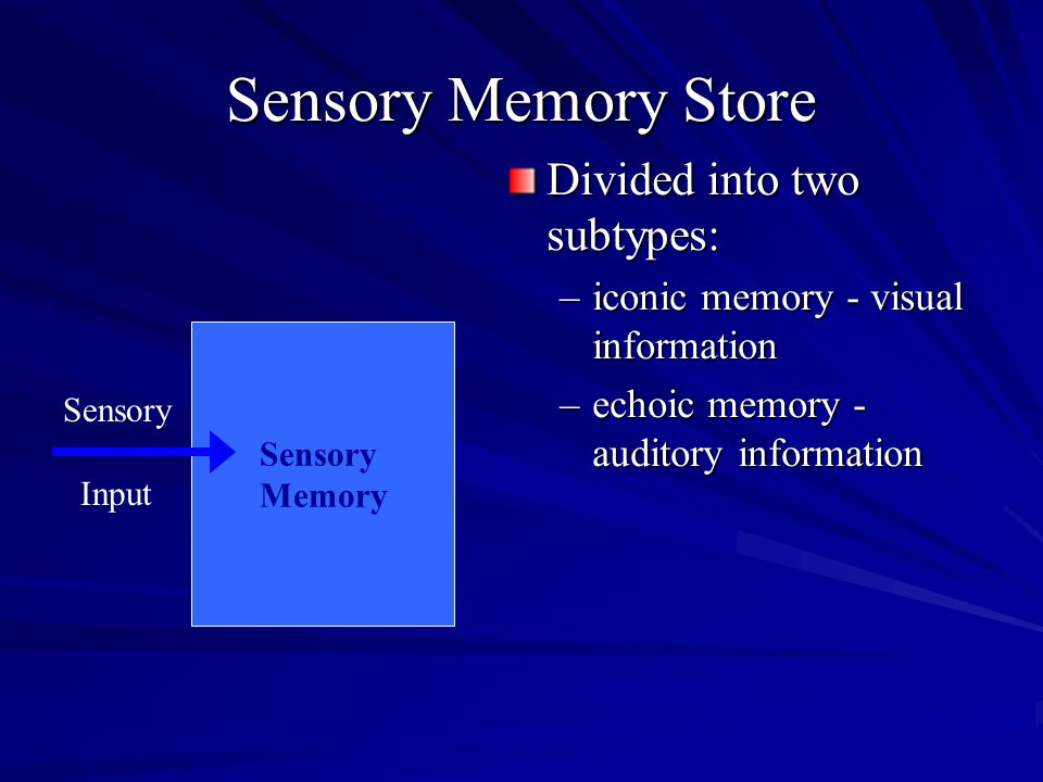 Sensory Memory Store Divided into two subtypes: –iconic memory - visual information –echoic memory - auditory information Sensory Input Sensory Memory