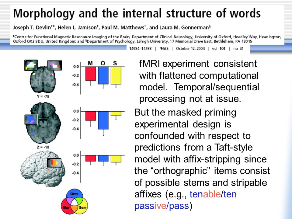 fMRI experiment consistent with flattened computational model.