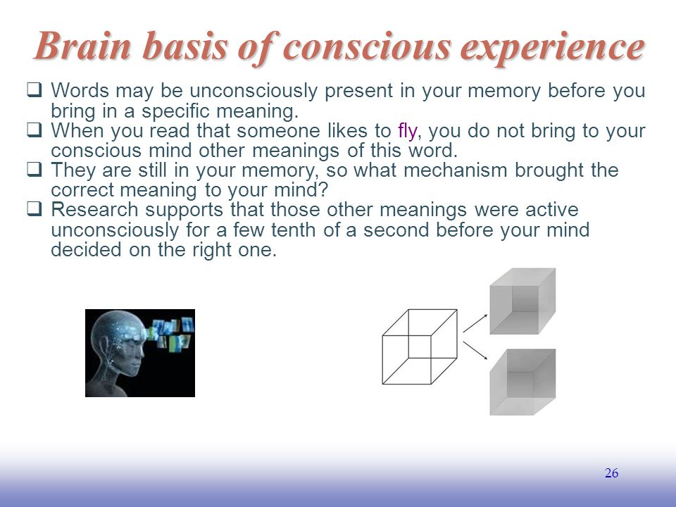 EE141 26 Brain basis of conscious experience  Words may be unconsciously present in your memory before you bring in a specific meaning.