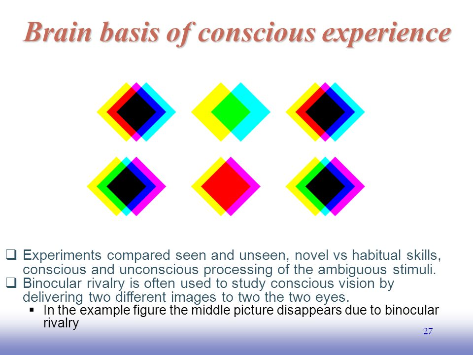 EE141 27 Brain basis of conscious experience  Experiments compared seen and unseen, novel vs habitual skills, conscious and unconscious processing of the ambiguous stimuli.