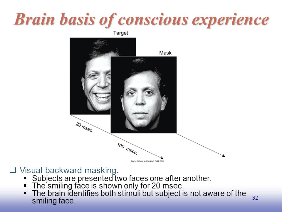 EE141 32 Brain basis of conscious experience  Visual backward masking.