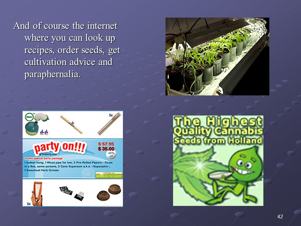 42 And of course the internet where you can look up recipes, order seeds, get cultivation advice and paraphernalia.