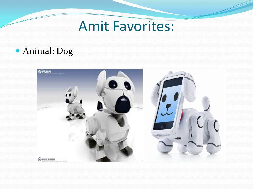 Amit Favorites: Animal: Dog