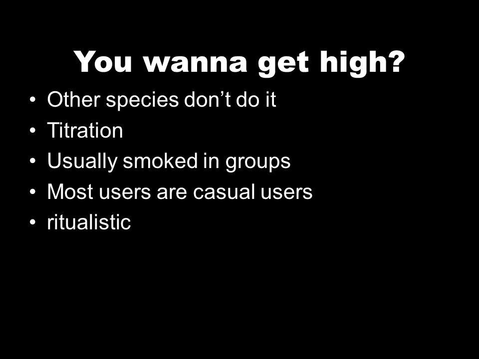 You wanna get high.
